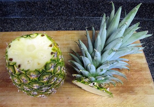 Post image for planting a pineapple for How to plant a pineapple top in a pot