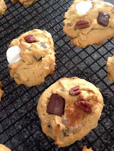Post image for Southern S'mores Cookies & Camp Monkey